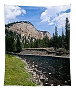 Upriver In Washake Wilderness Tapestry