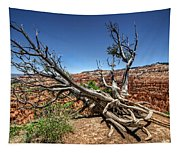 Uprooted - Bryce Canyon Tapestry