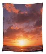 Usa, California, Pillar Point, View Tapestry