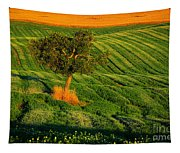 Val D'orcia Tree Tapestry