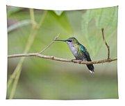 Vanishing In Nature.. Tapestry
