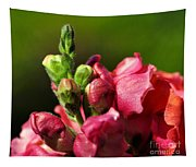 Variegated Snapdragon Tapestry