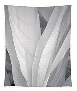 Veil Tapestry