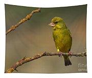 Greenfinch Tapestry