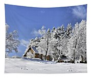 Vermont Winter Beauty Tapestry