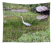 Very Hungry Blue Heron Tapestry