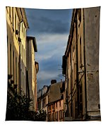 Vienne France Tapestry
