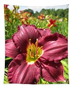 Viette's Daylily. Dark Purple 01 Tapestry