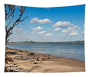 View From Big Talbot Island Beach Tapestry