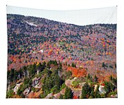 View From Devil's Courthouse 3 Tapestry