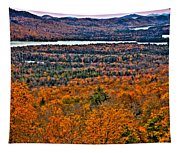 View From Mccauley Mountain Tapestry