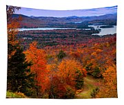 View From Mccauley Mountain II Tapestry