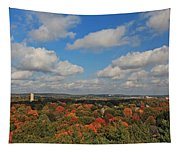 View From Mt Auburn Cemetery Tower Tapestry