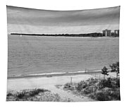 View From The Fort Gratiot Light House Tapestry