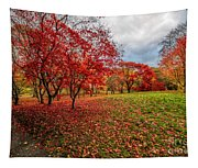 View Of Autumn Tapestry