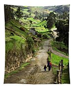 View Of Lupaxi Tapestry