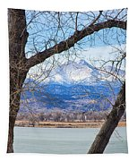 View Through The Trees To Longs Peak Tapestry