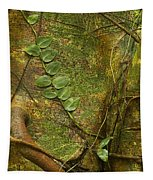 Vine On Tree Bark Tapestry