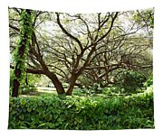 Vines And Oaks Tapestry