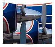 Vintage Airplane Tapestry