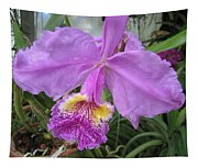 Violet Orchid Tapestry