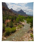 Virgin River Through Zion National Park Tapestry