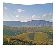 Virginia Mountains  Tapestry