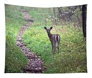 Virginia - Shenandoah National Park - White Tailed Deer Tapestry