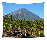Volcan Concepcion Nicaragua Tapestry
