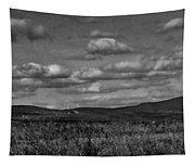 Wachusett Mountain Bw Tapestry