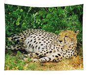 Waiting For Baby Cheetahs Tapestry