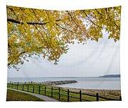 Walk Along The Shoreside Tapestry