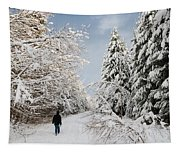Walk In The Winterly Forest With Lots Of Snow Tapestry