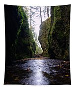 Walking In The Gorge Tapestry