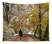 Walking Into Winter - Beautiful Autumnal Trees And The First Snow Of The Year Tapestry
