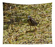 Walking On The Reeds Tapestry