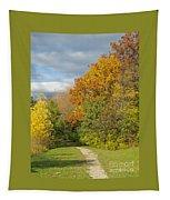 Walking Through Autumn Tapestry