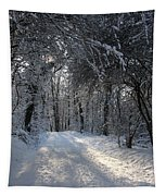Walkway In Black And White Tapestry