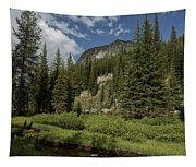 Wallowas - No. 1 Tapestry