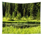 Wallowas - No. 9 Tapestry