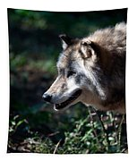 Wandering Wolf Tapestry
