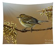 Yellow Rumped Warbler Tapestry