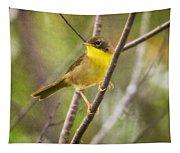 Warbler In Sunlight Tapestry
