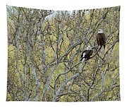Watchful Tapestry
