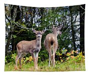 Watching Out For Mom Tapestry