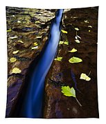 Water And Stone Tapestry