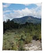 Water-carved Base Rock And Mt Baldy Tapestry