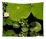 Water Drops Bristol Rhode Island Tapestry