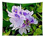 Water Hyacinth On Rapti River In Chitwan Np-nepal Tapestry