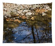 Water Leaves Stones And Branches Tapestry
